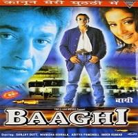 baaghi-2000-full-movie