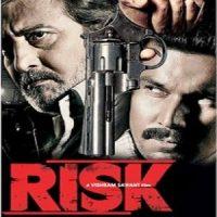 Risk 2007