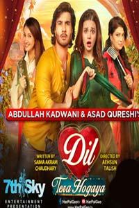 Dil Tera Hogaya (2020) URDU Telefilm Full Movie Watch HD Print Online Download Free